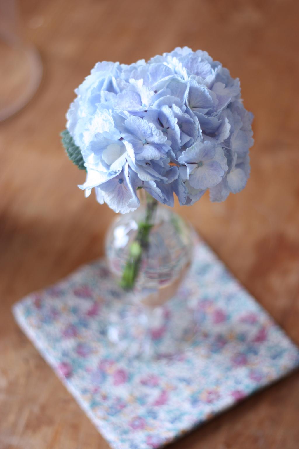 2flowergirls-hortensia2