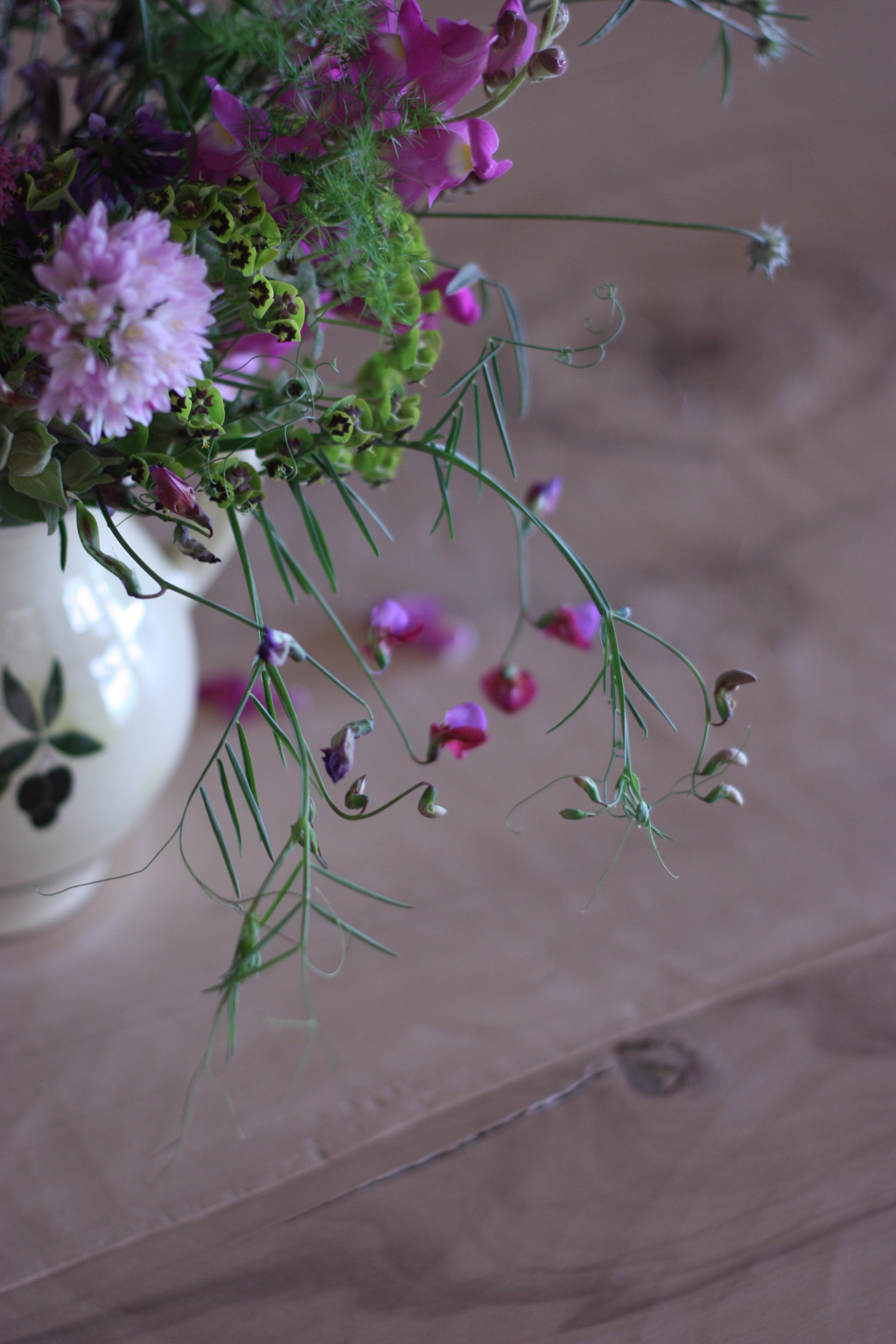 wild_flowers_in_Spain_2