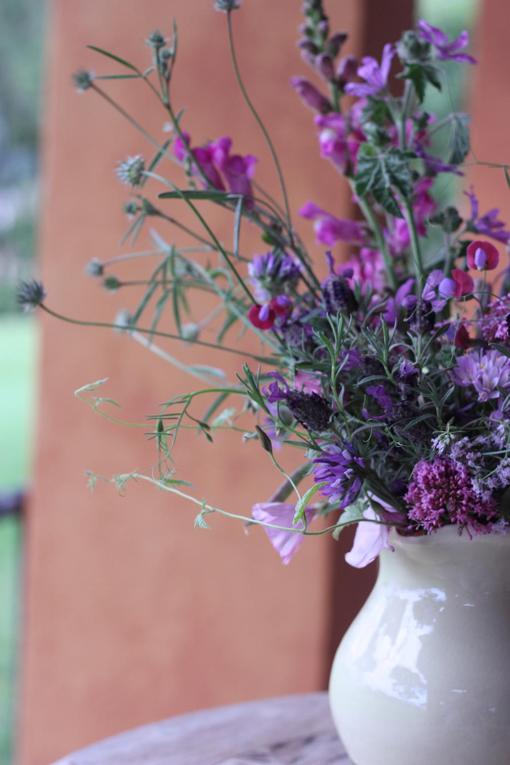 wild_flowers_in_Spain_4