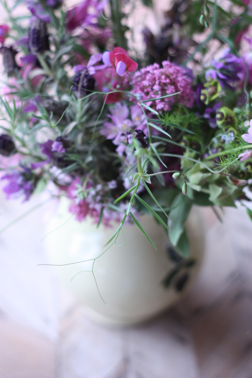 wild_flowers_in_Spain_7