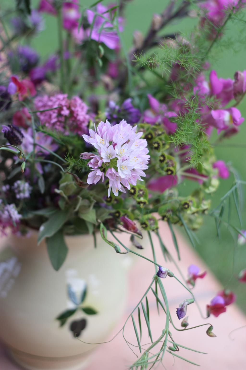 wild_flowers_in_Spain_9