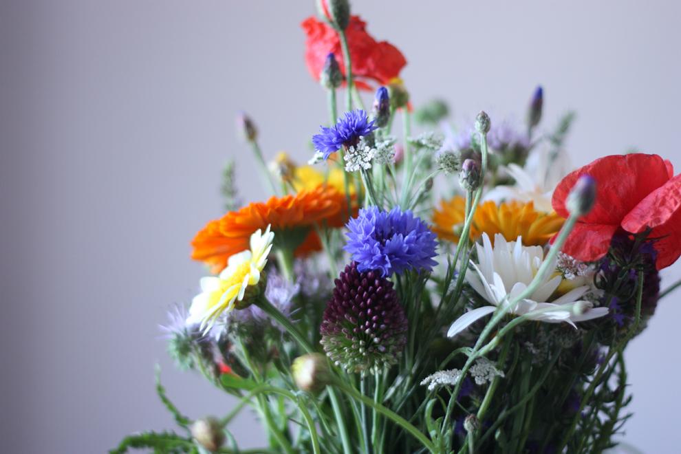 summer_flowers_1