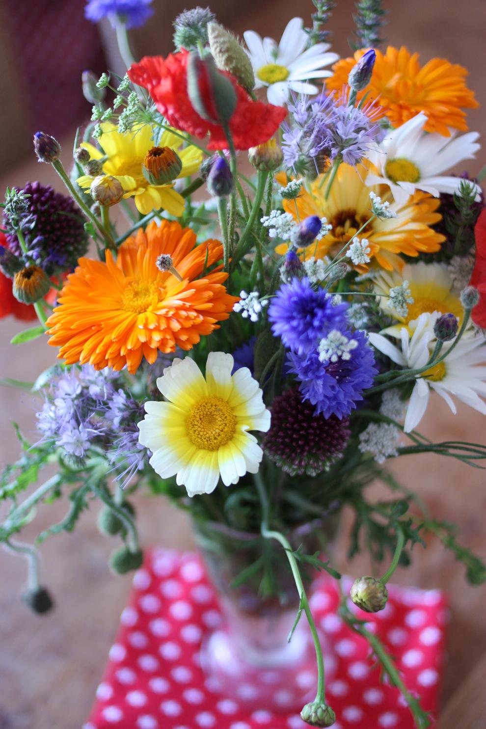 summer_flowers_4