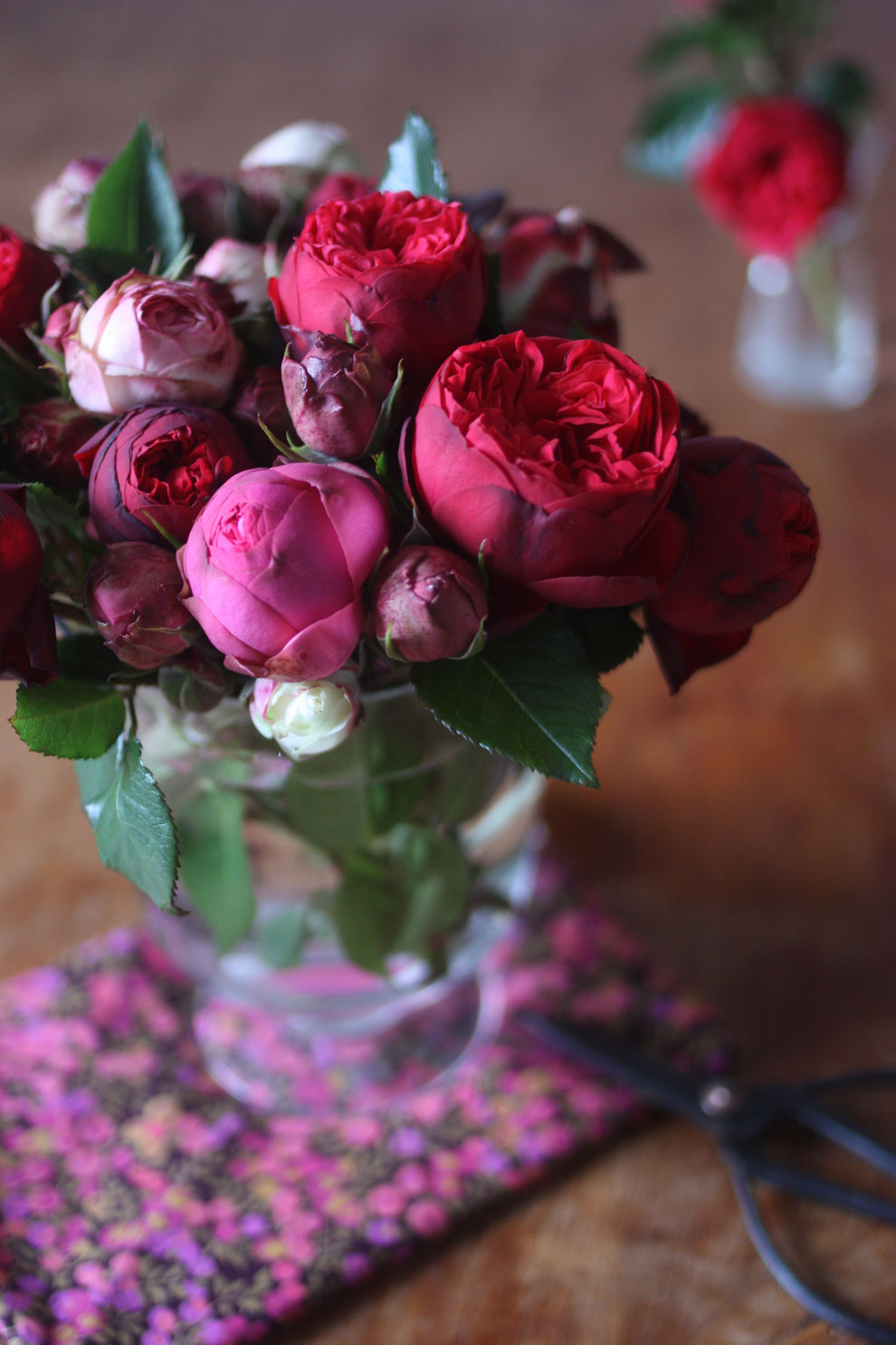 red_and_pink_roses_11