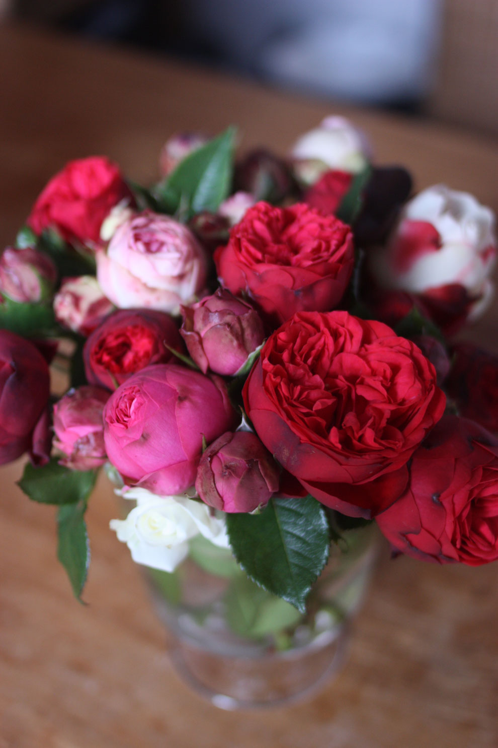 red_and_pink_roses_5