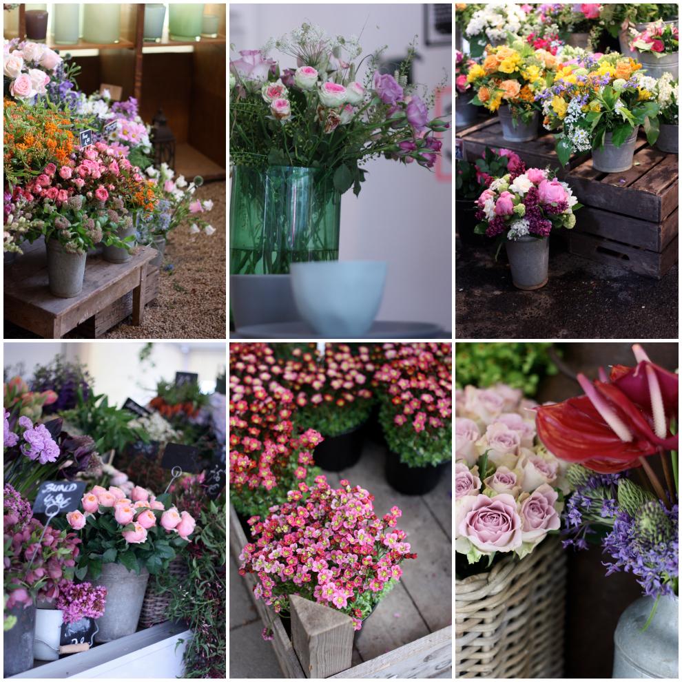 Lovely flower shops