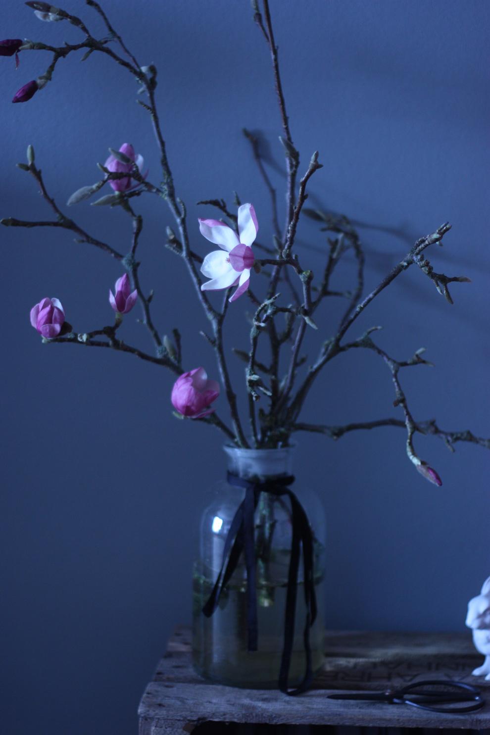 magnolia_overview
