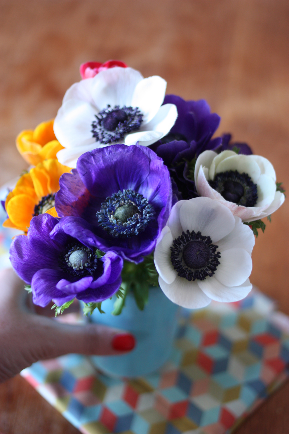 2flowergirls_anemone_hand