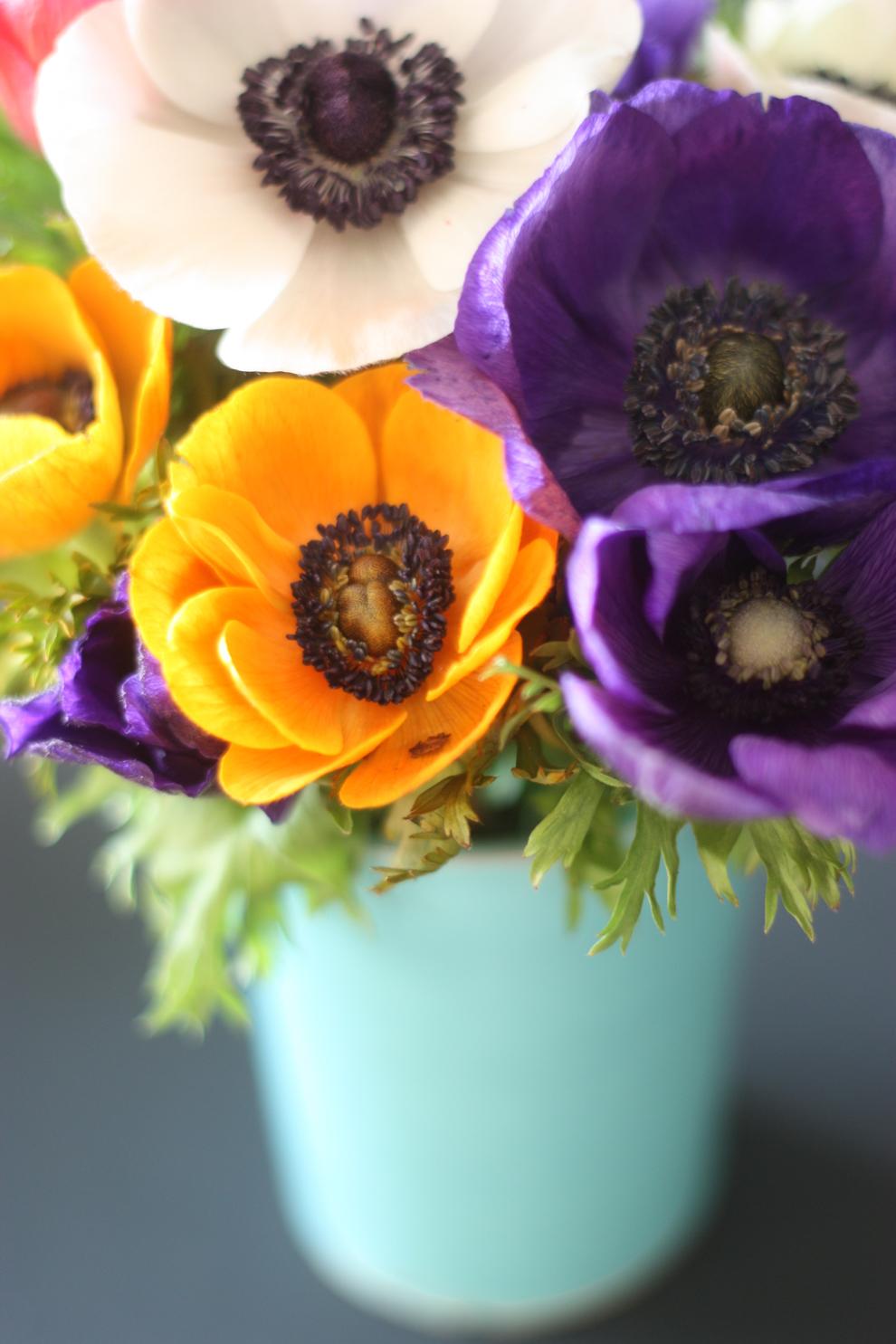 2flowergirls_anemone_yellow
