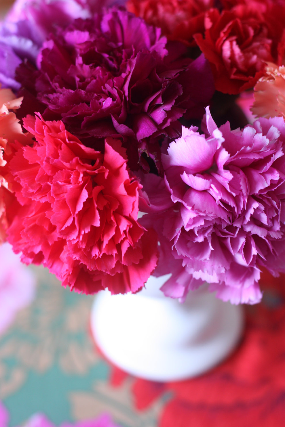 2flowergirls_carnation_colourful