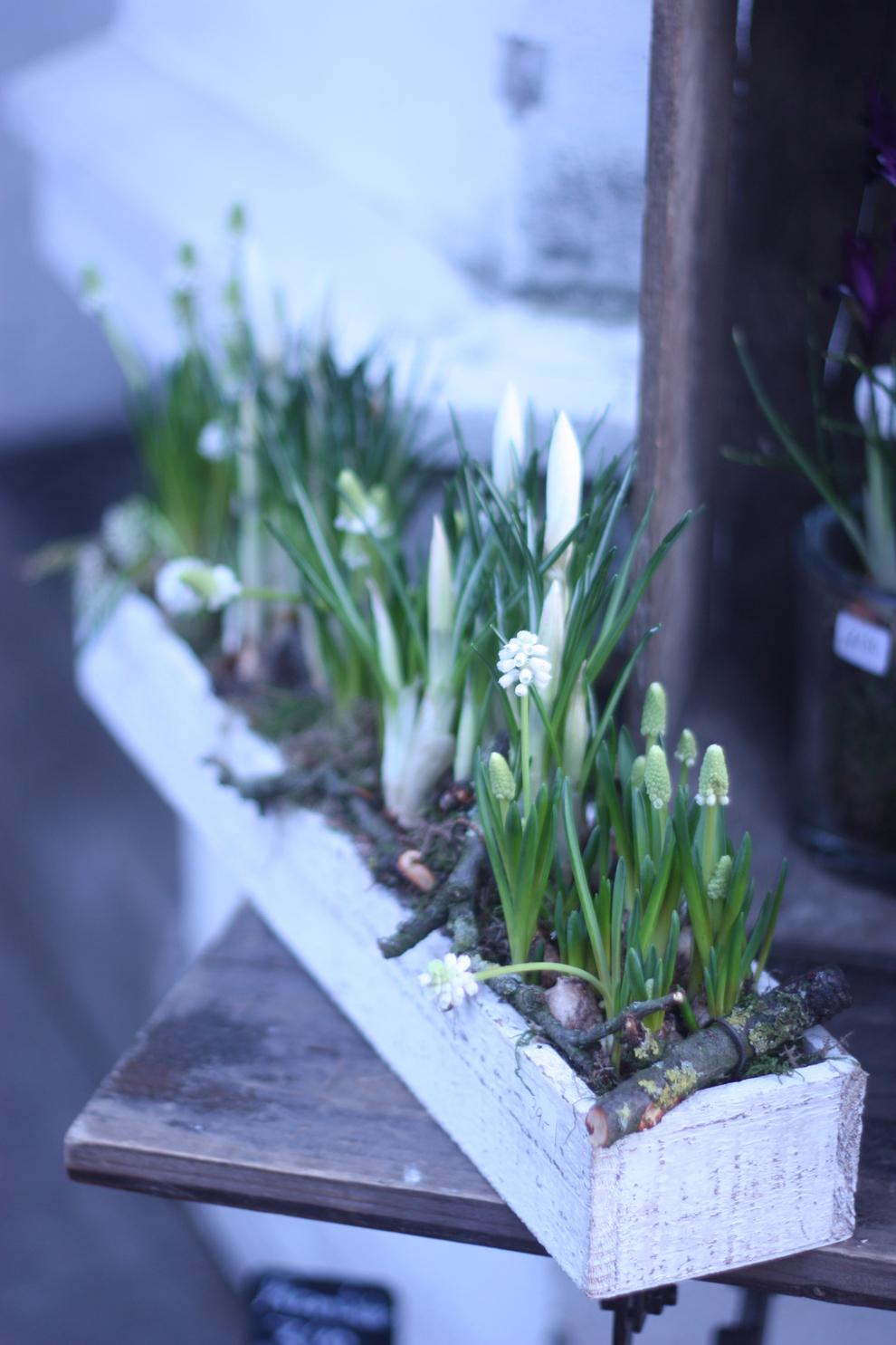 Blumenküche_withe_flowers