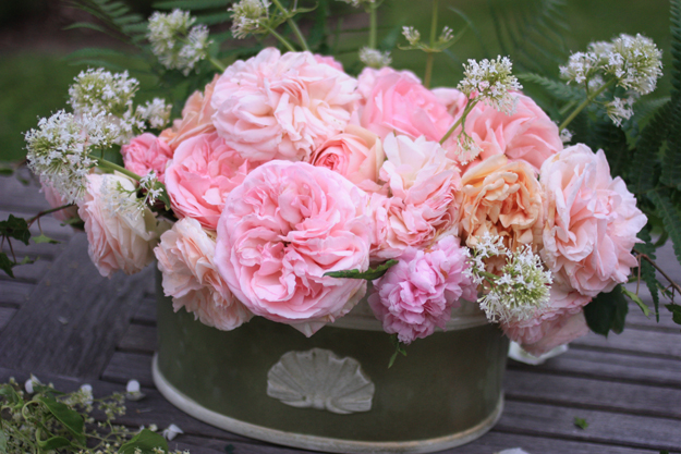 Bouquet_of_roses_madame_love