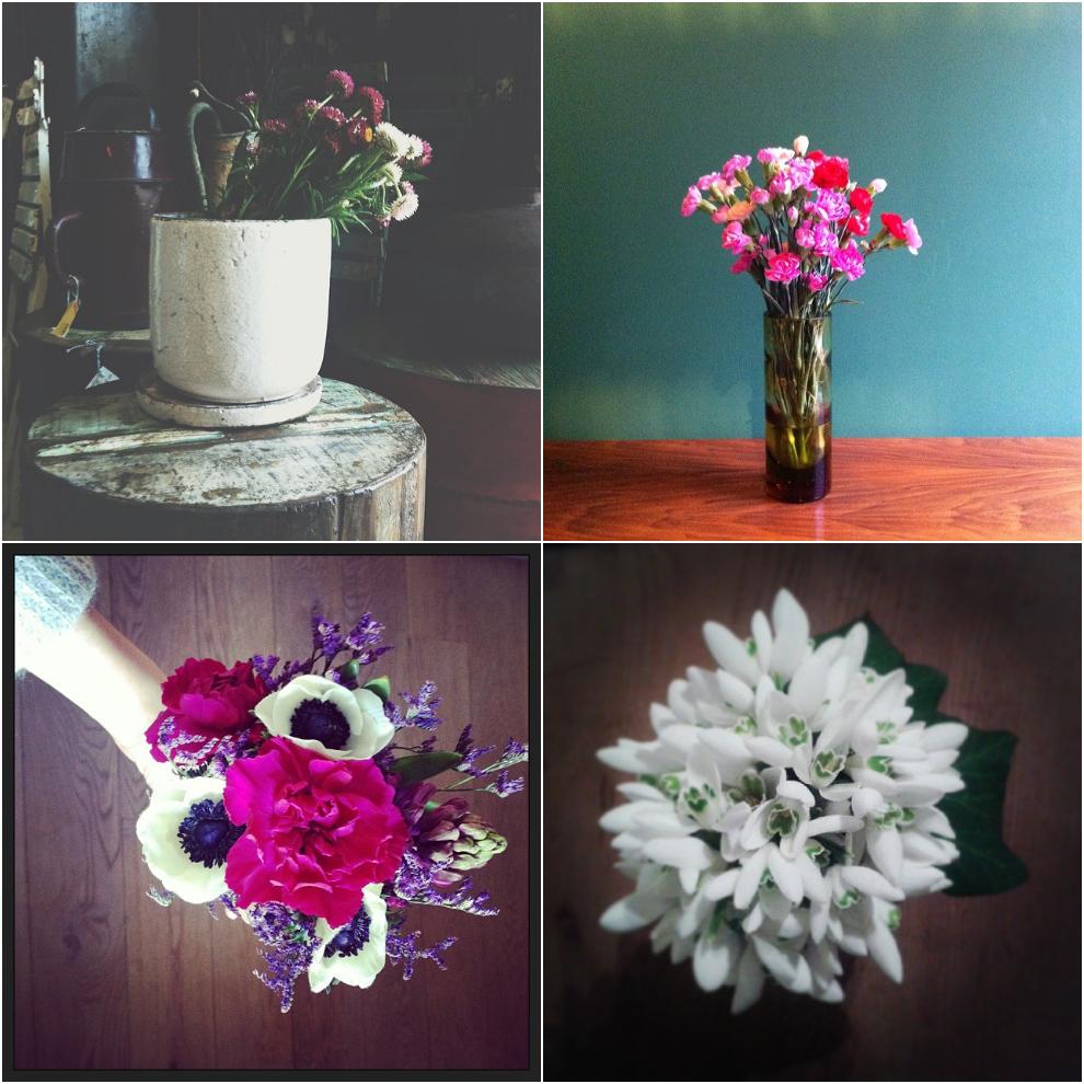 Pic_flowersonmyway_February.jpg