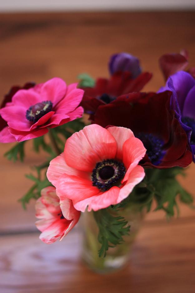 anemones_bouquet