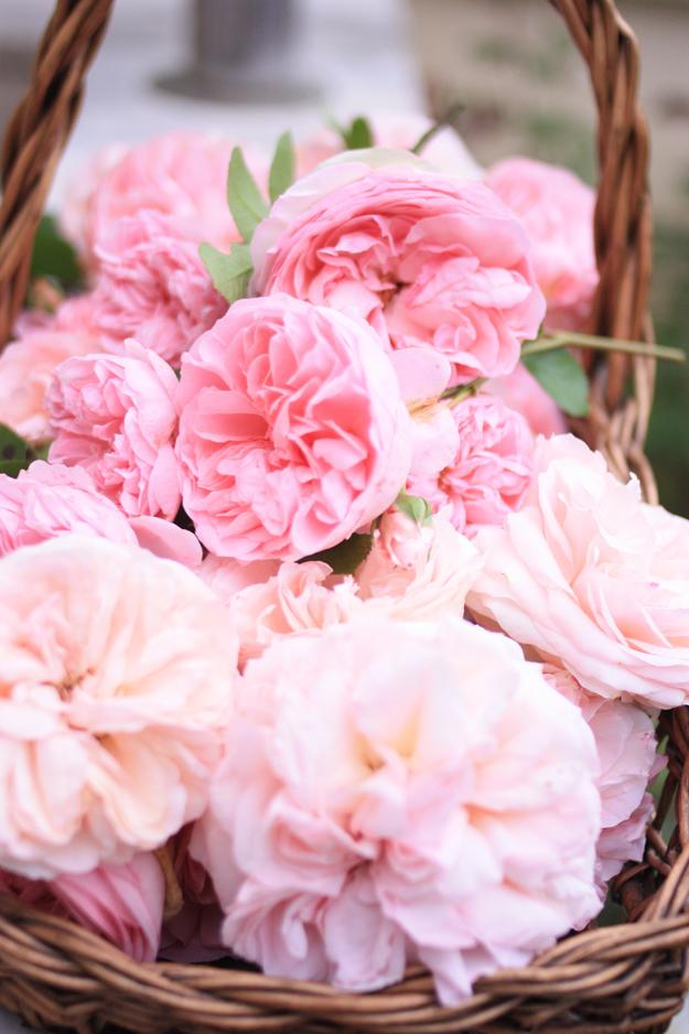 basket_of_roses