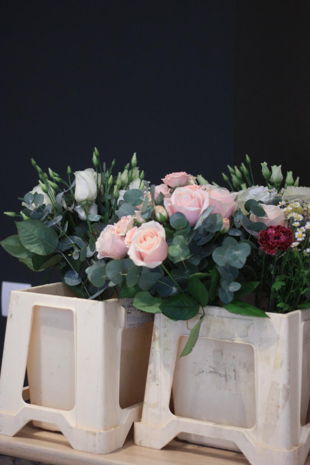 bergamotte_Paris roses
