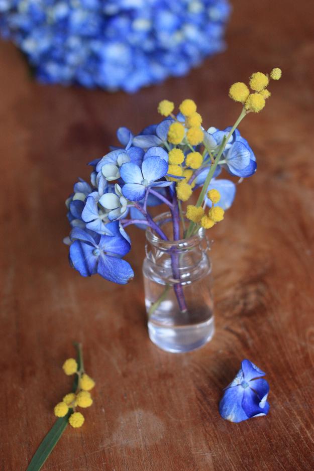 bouquet mimosa hortensia