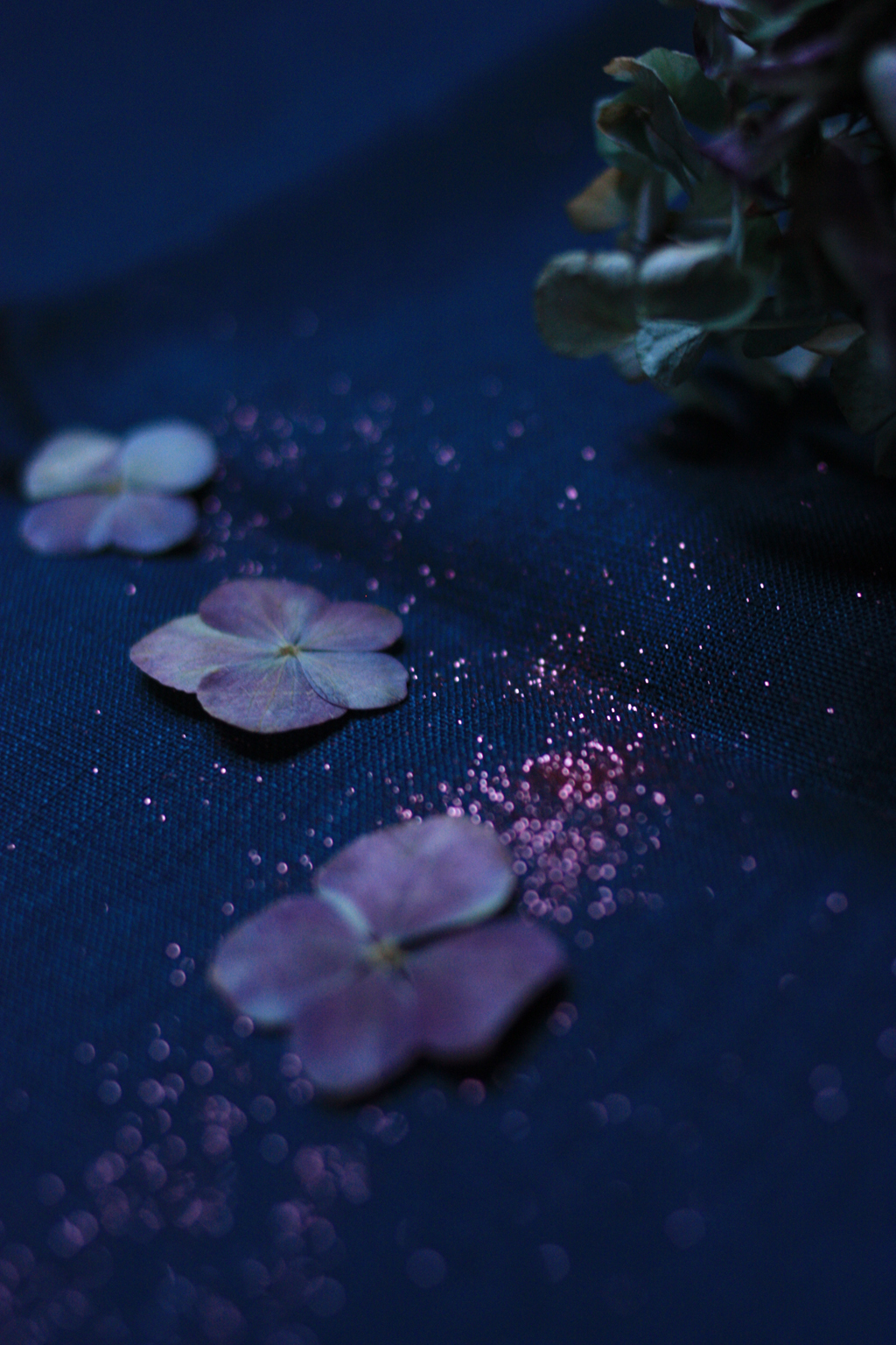 cadre indien hortensia paillettes