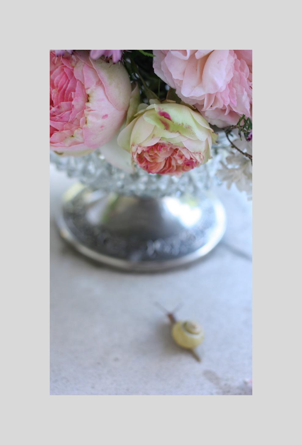 eden-roses-bouquet