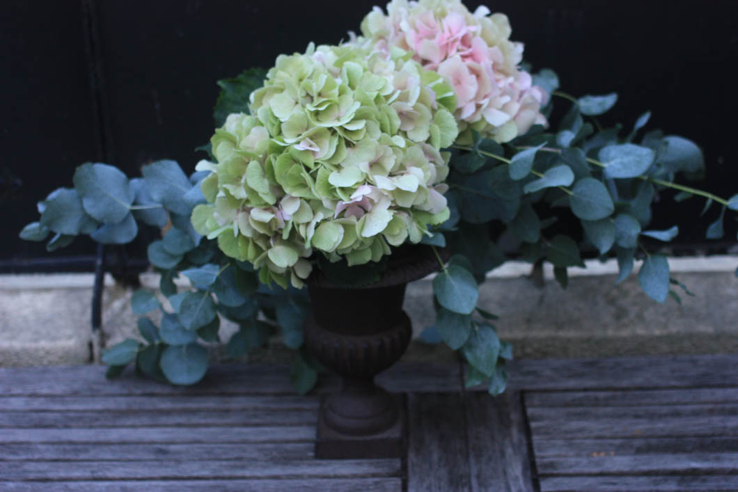 hortensia by madame love