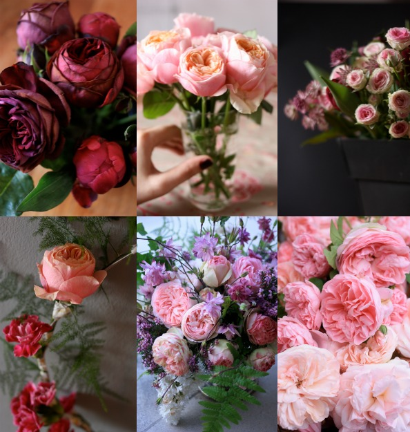 my year in roses by madame love