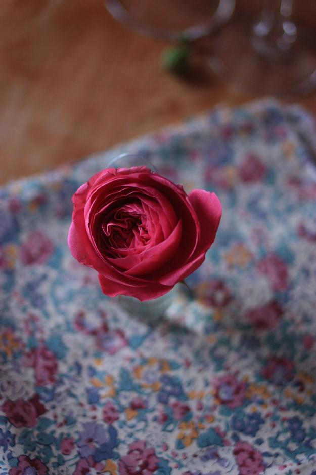 red_garden_roses_5