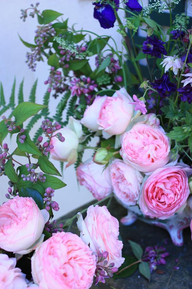 roses iris et fougere
