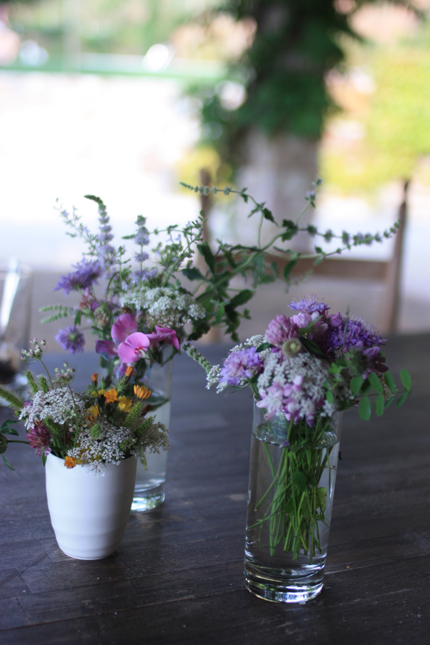 wild_flowers_from_Italy