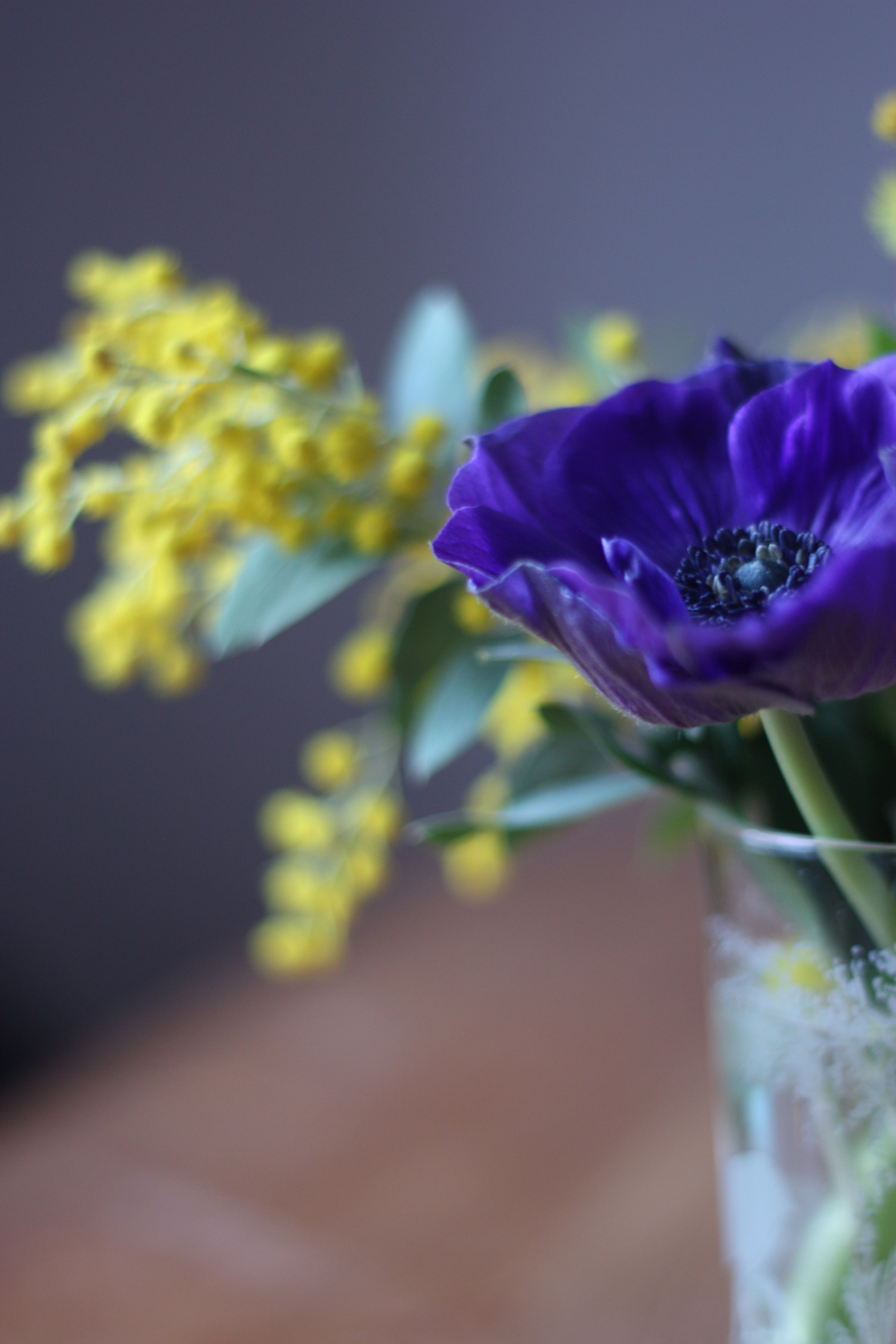 Anemones & Mimosa-by-madame-love