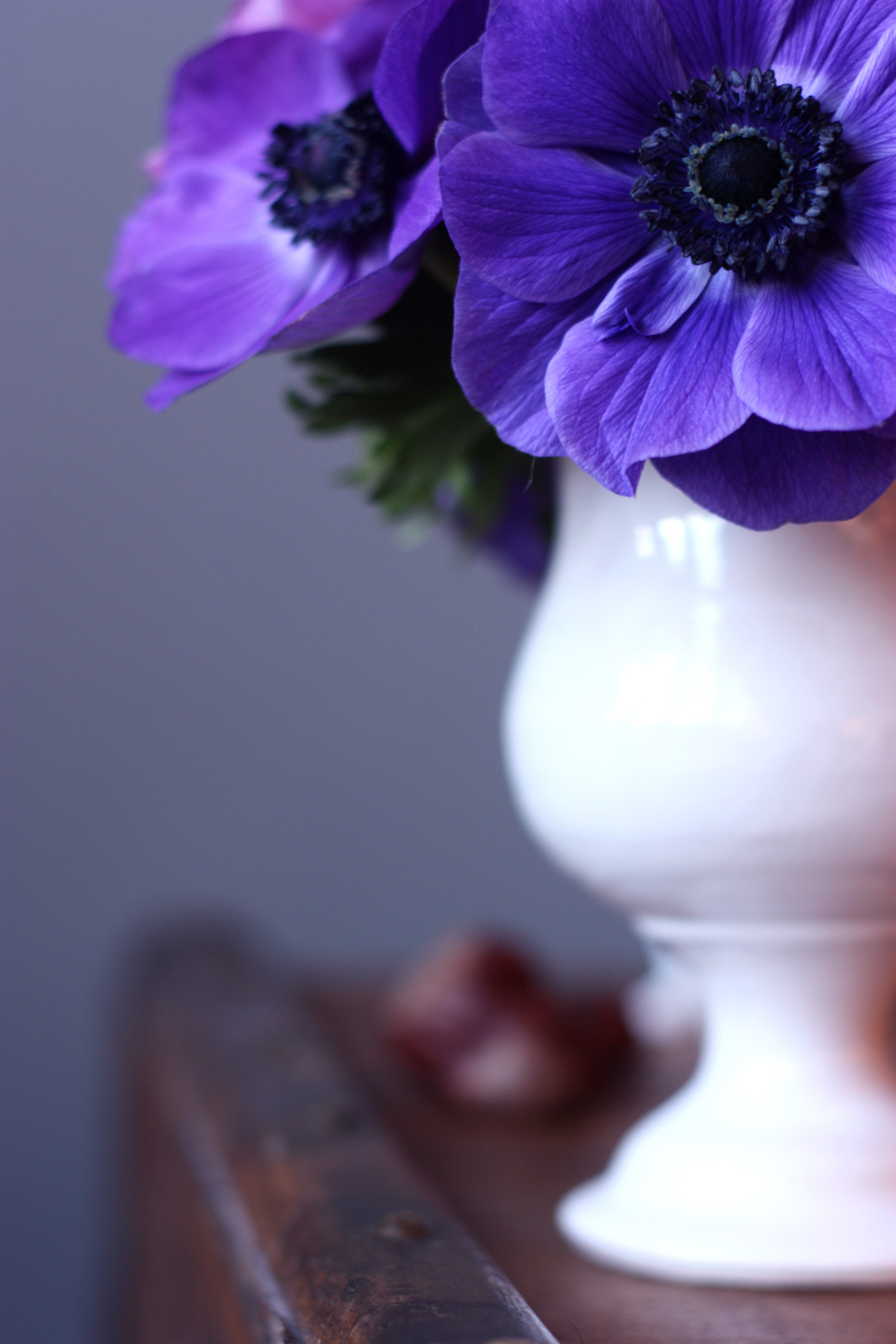 blue-anemones-in-a-white-vase