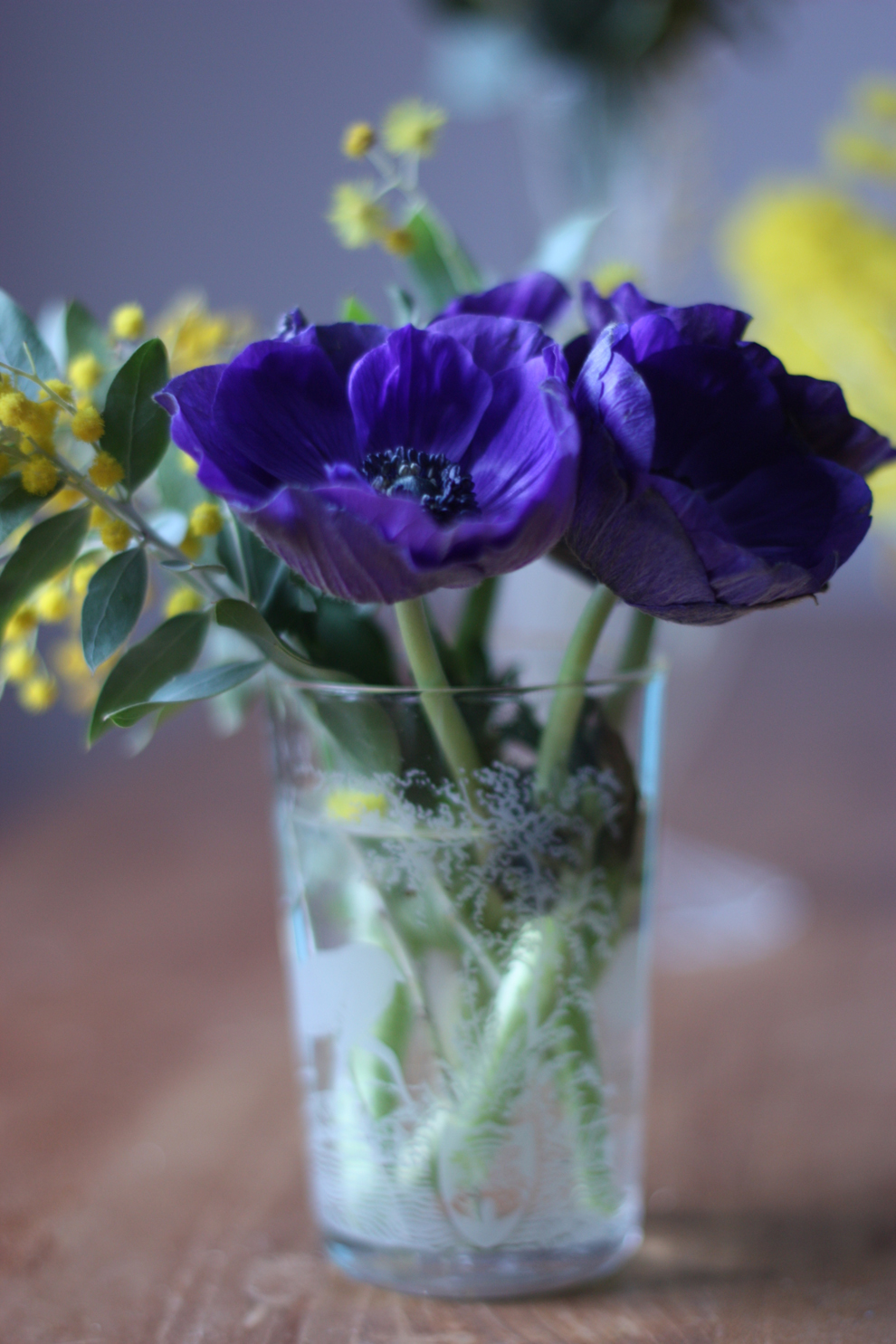delicate-blue-anemones-by-madame-love