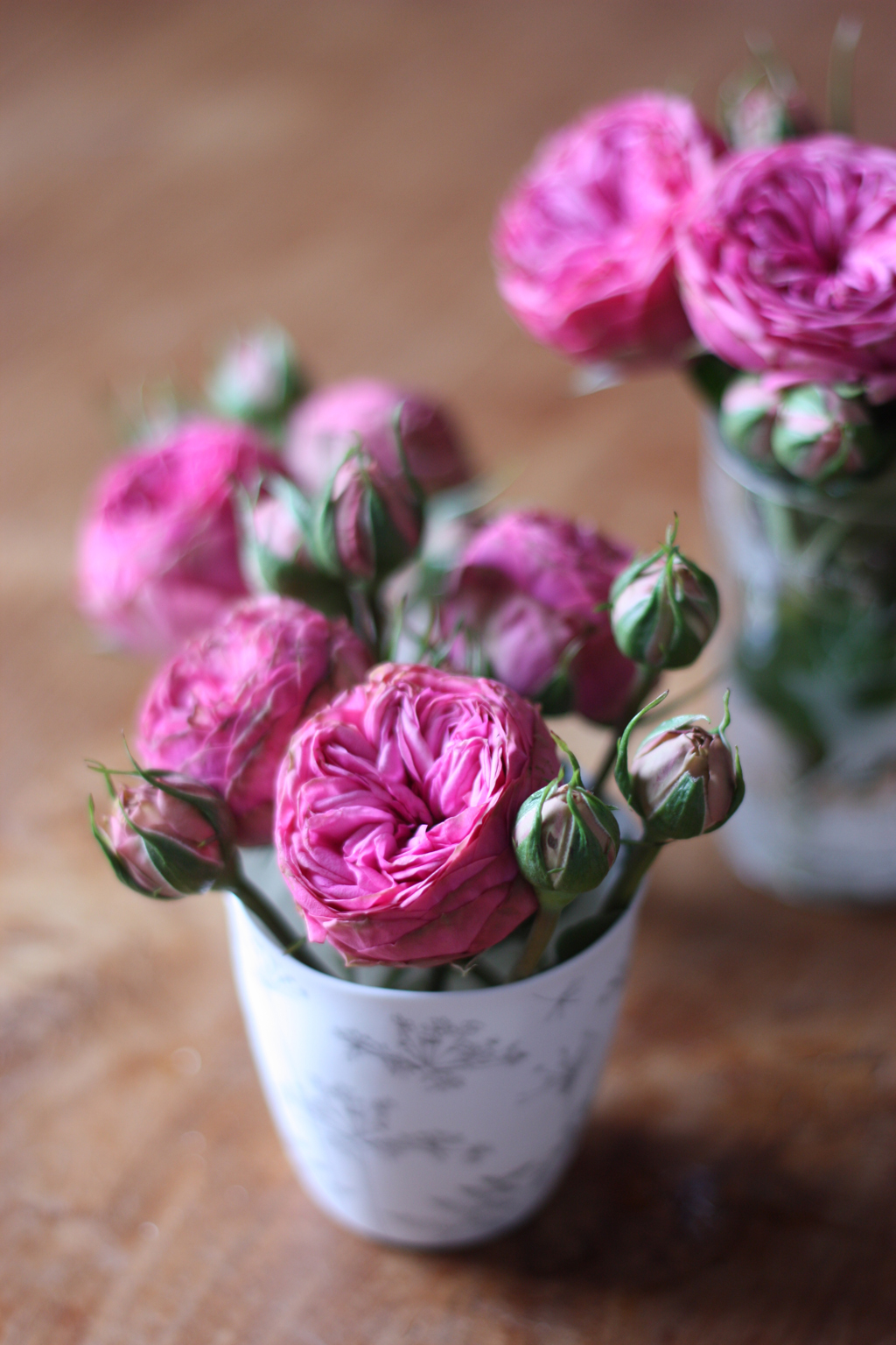 pink roses in a white vase by madame love