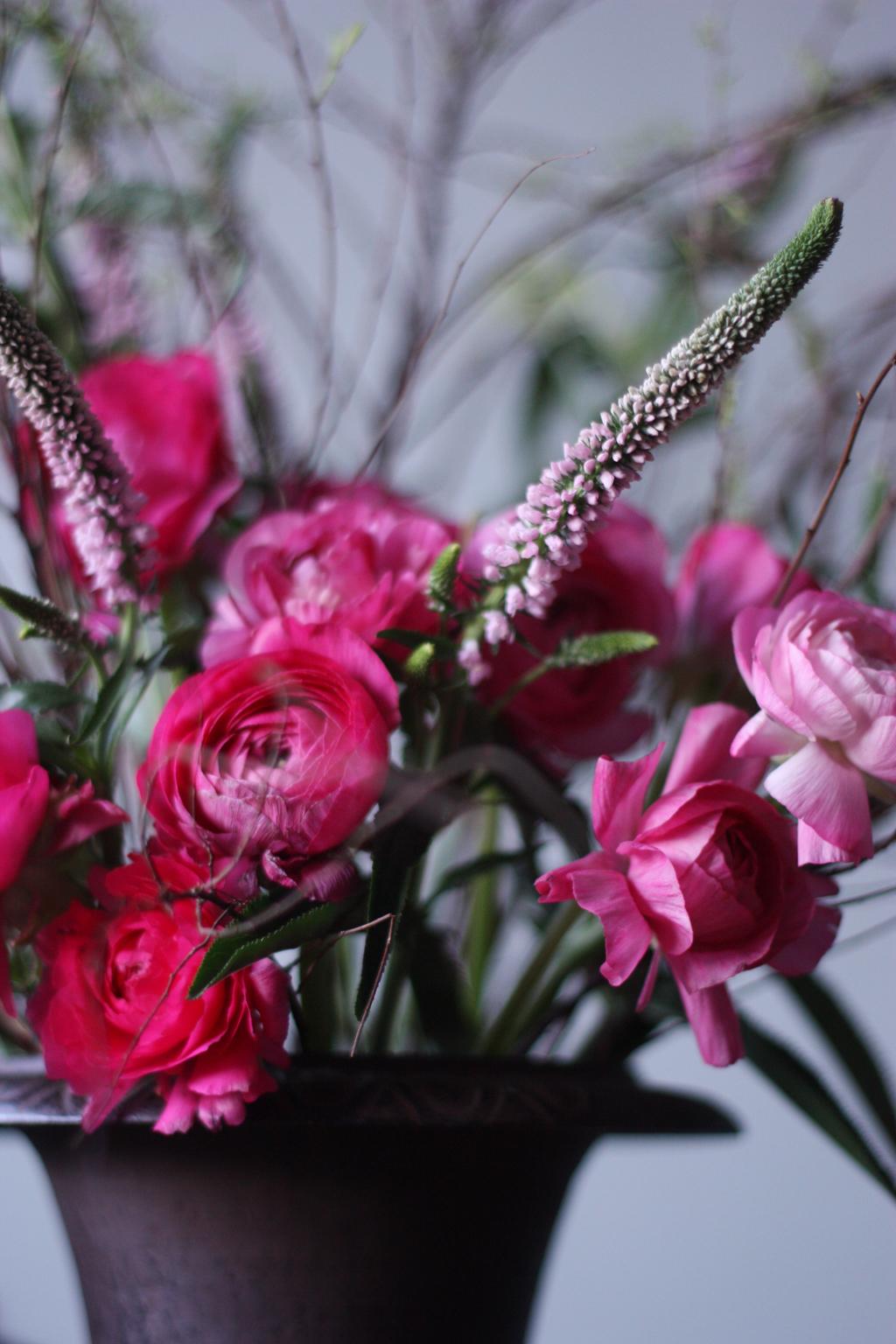 Still_life_in_pink_1
