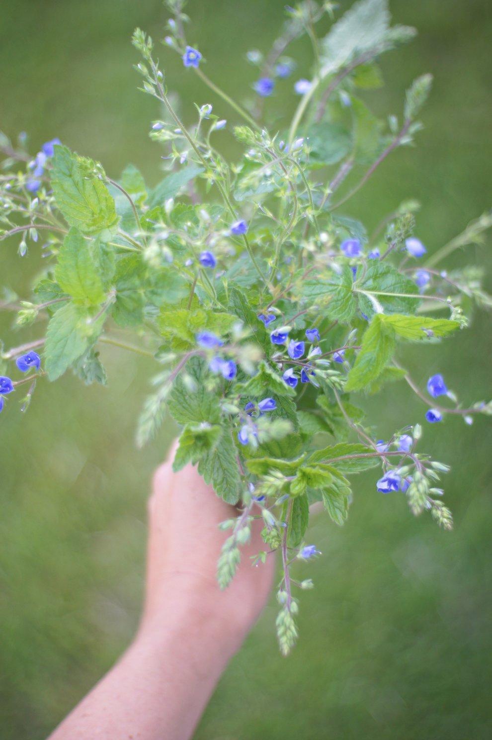 Wild_flower_bouquet