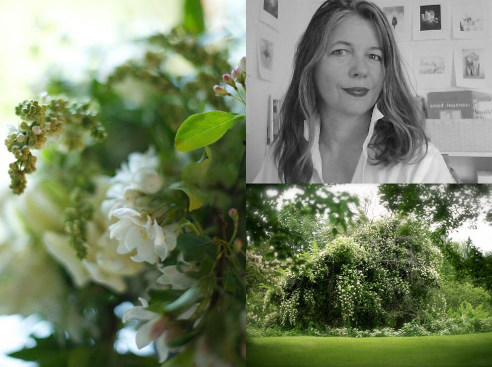 Laurie_Wheeler-portrait-image2
