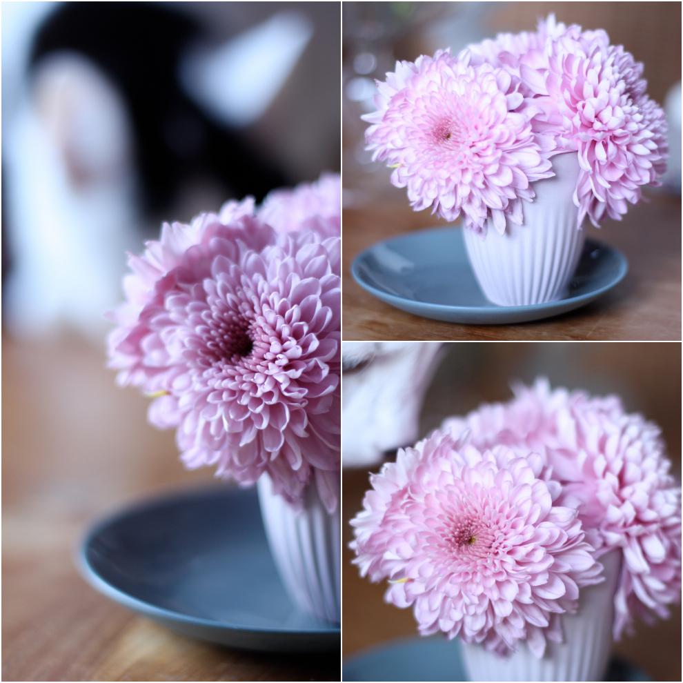 2flowergirls_chrysanthemum_madame_love_1