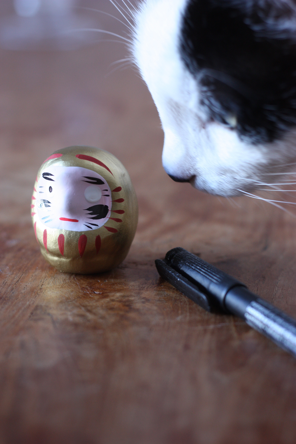 Cat_and_Daruma_by_madame_love
