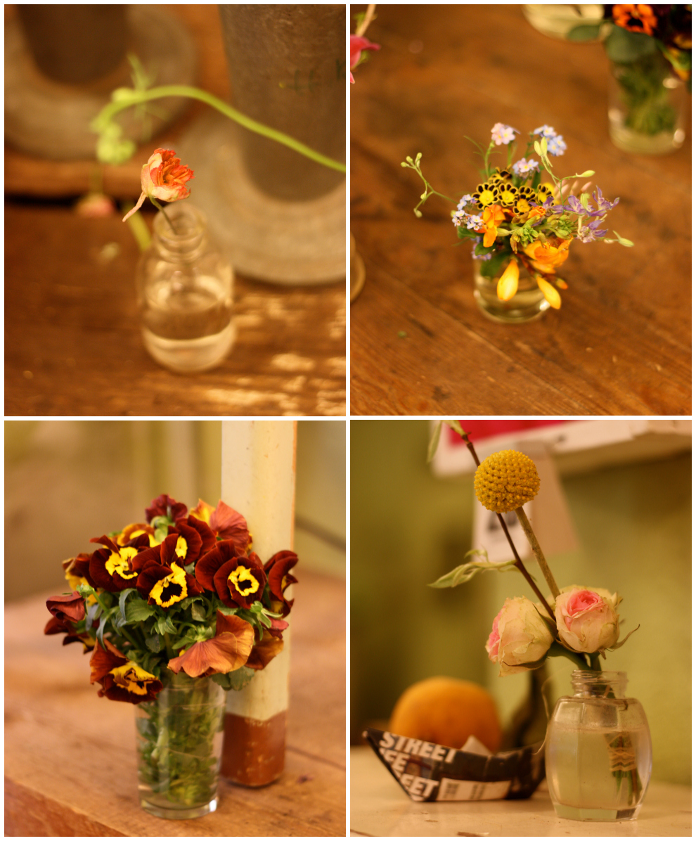 Saxifraga_mini_bouquets