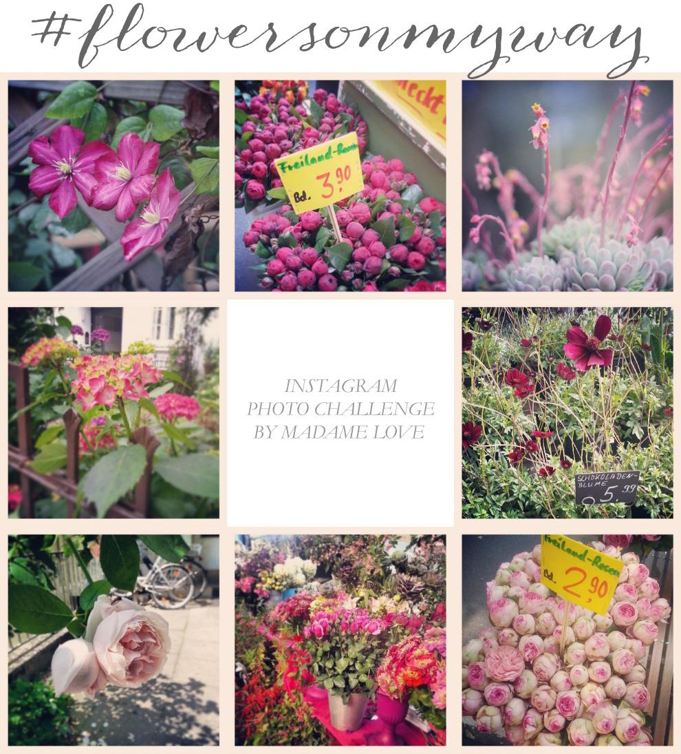 Flowers_on_my_way