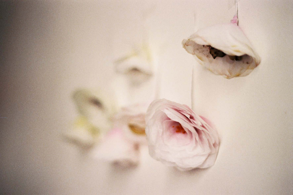 Lyindie_dourthe_FleursPapier
