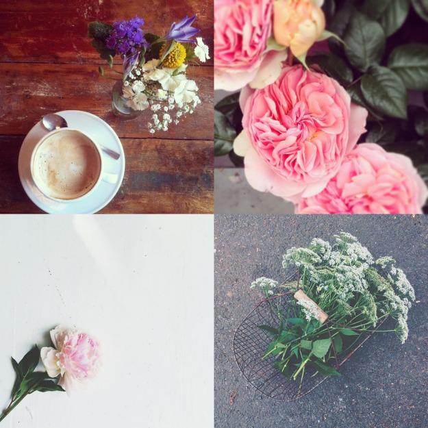 Flowersonmyway_May.jpg.jpg