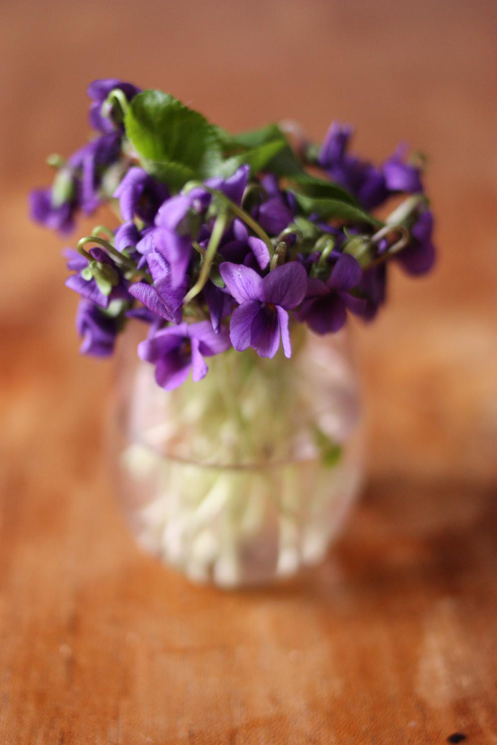 Violet_medium