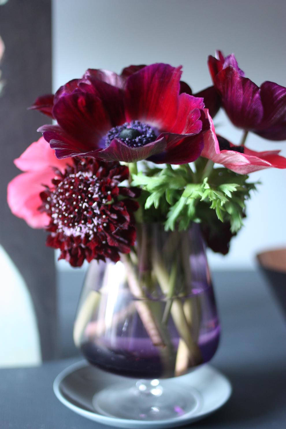 anemone_red_pink_vase