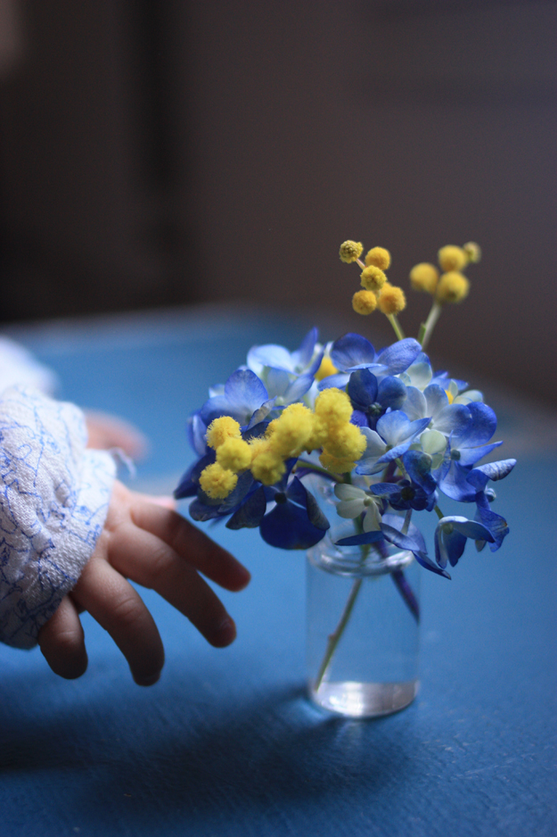 baby_hands_mimosa
