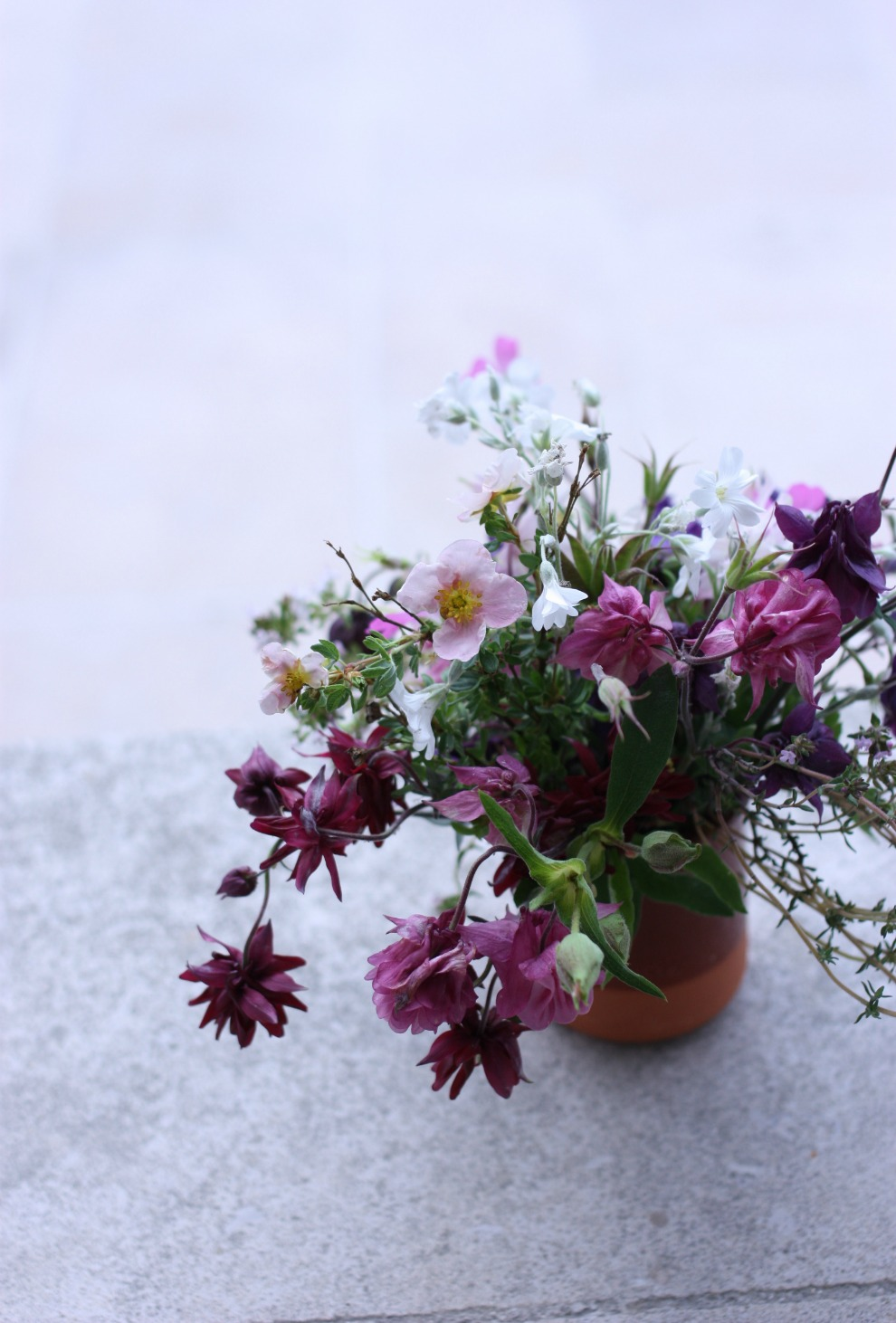 from the garden_4