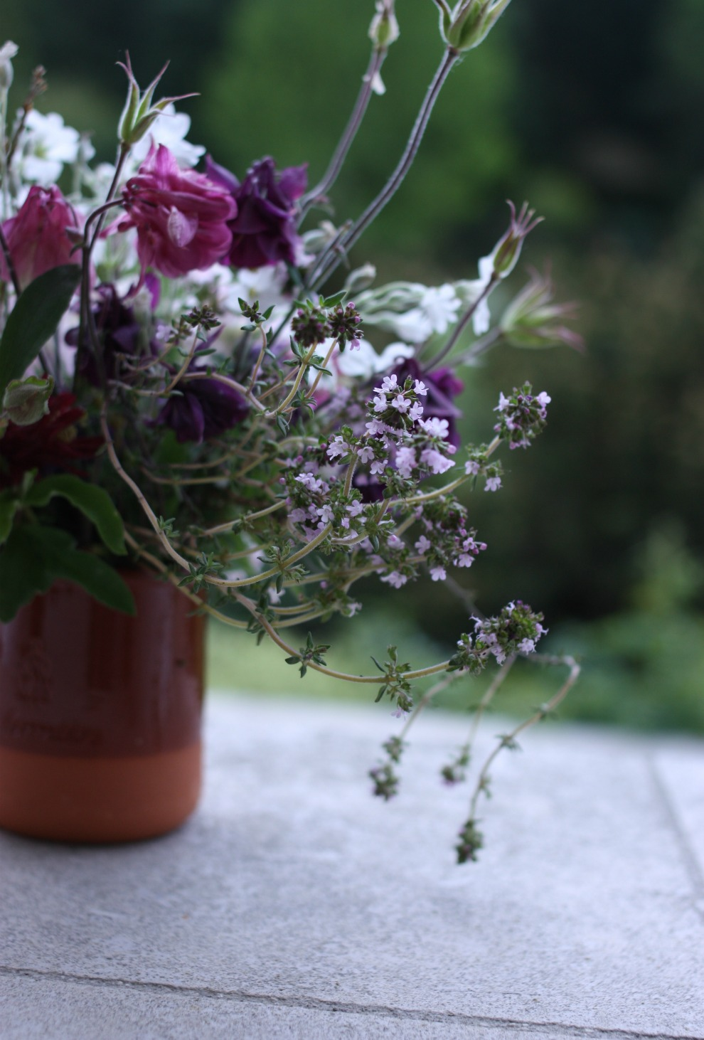from the garden_5