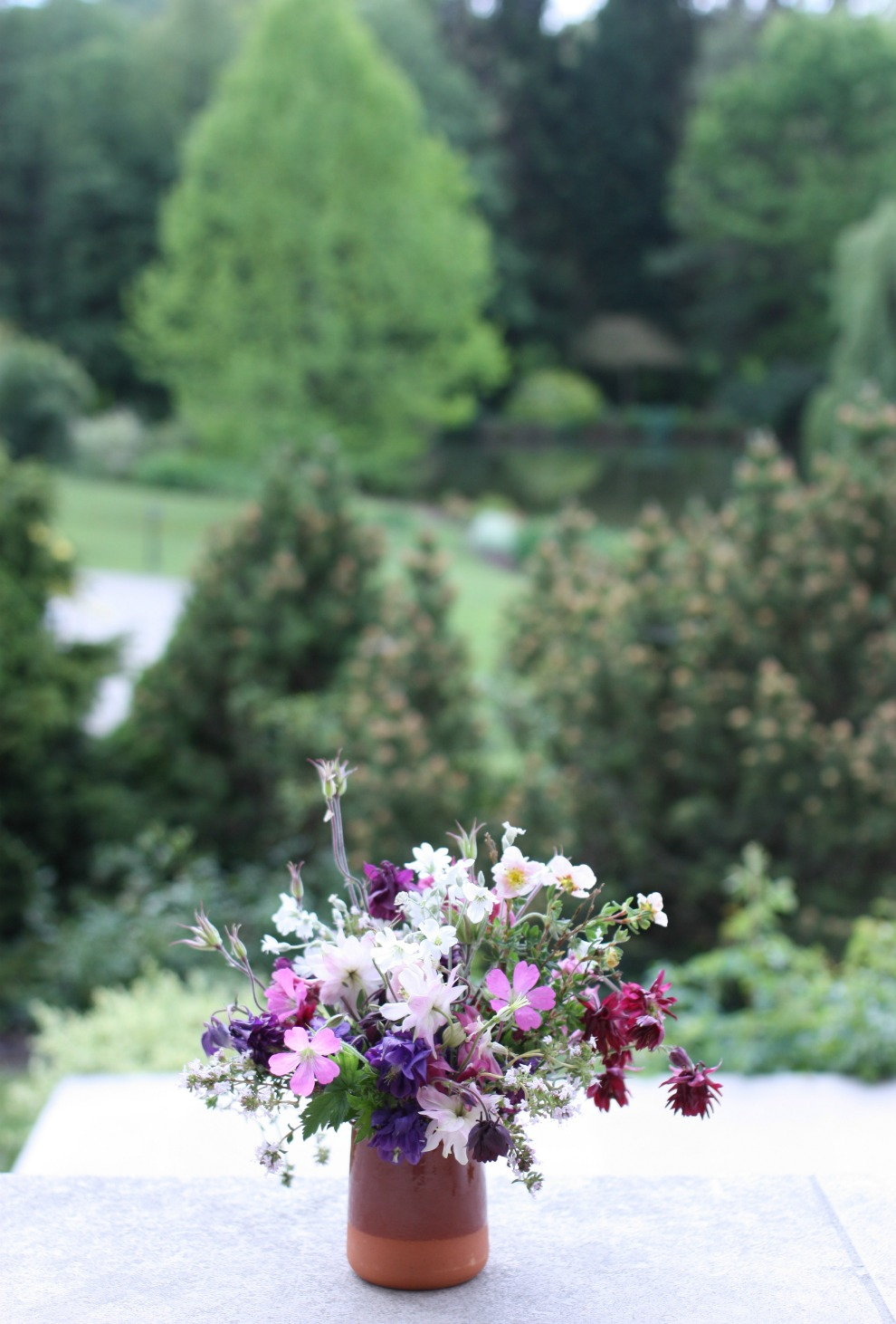 from the garden_6