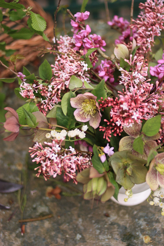 lilac and hellebores