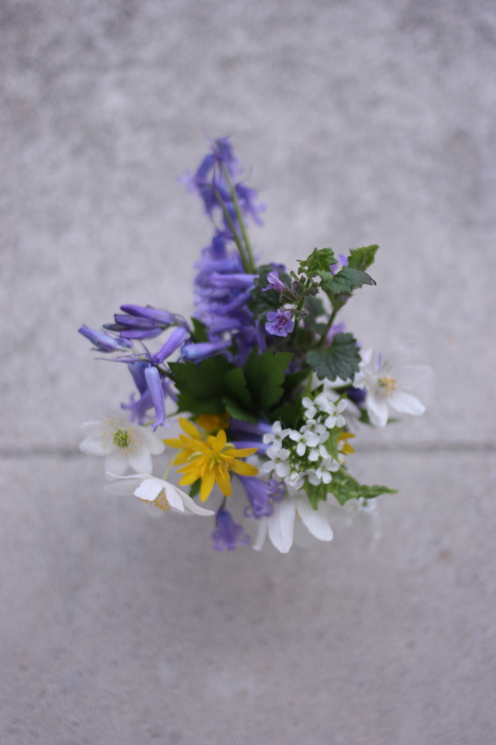mini_bouquet_from_the_forest_3