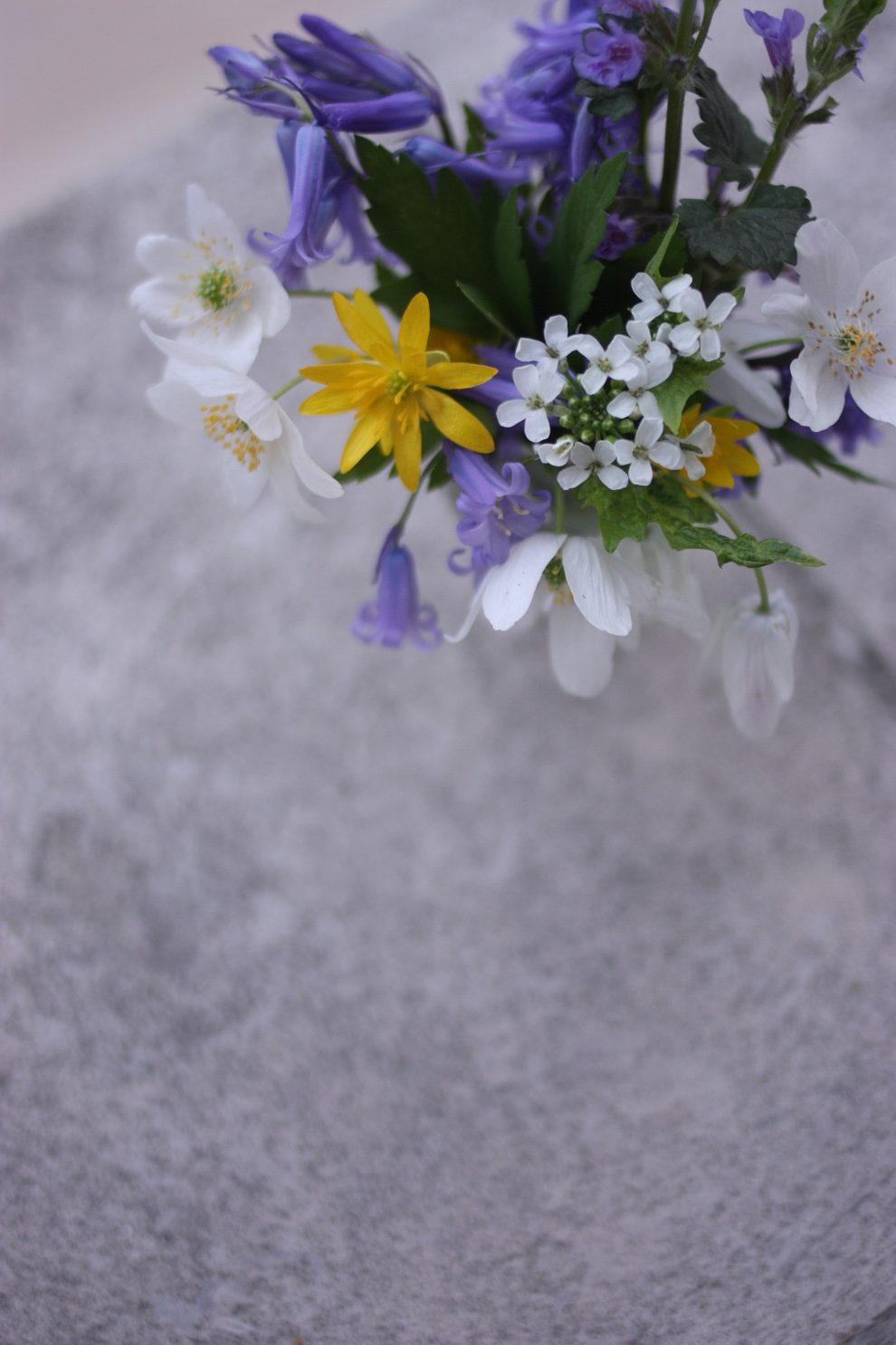 mini_bouquet_from_the_forest_9